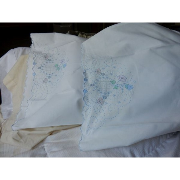 Sky Blue Embroidery Pillow Case